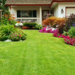 Landscaping & Sod St. Tammany Parish