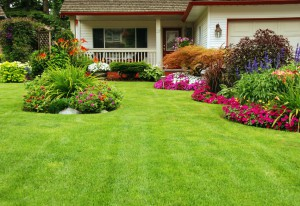 Landscaping & Sod St. Tammany Parish