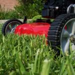 Lawn Maintenance St. Tammany Parish
