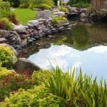 Pond Design & Installation St. Tammany Parish
