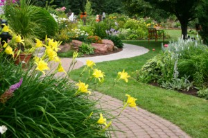 Benefits of Using a Professional St. Tammany Parish Landscaping Company
