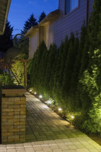 Tips for Effective St. Tammany Parish Landscape Lighting